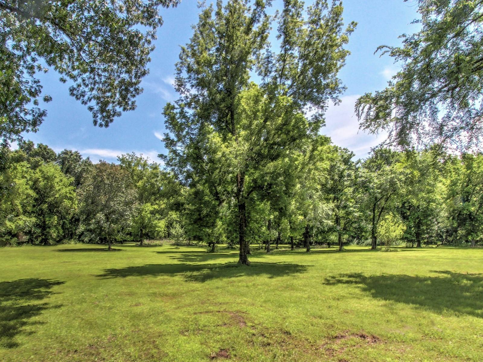 2525 Deer Run Property Photo 39