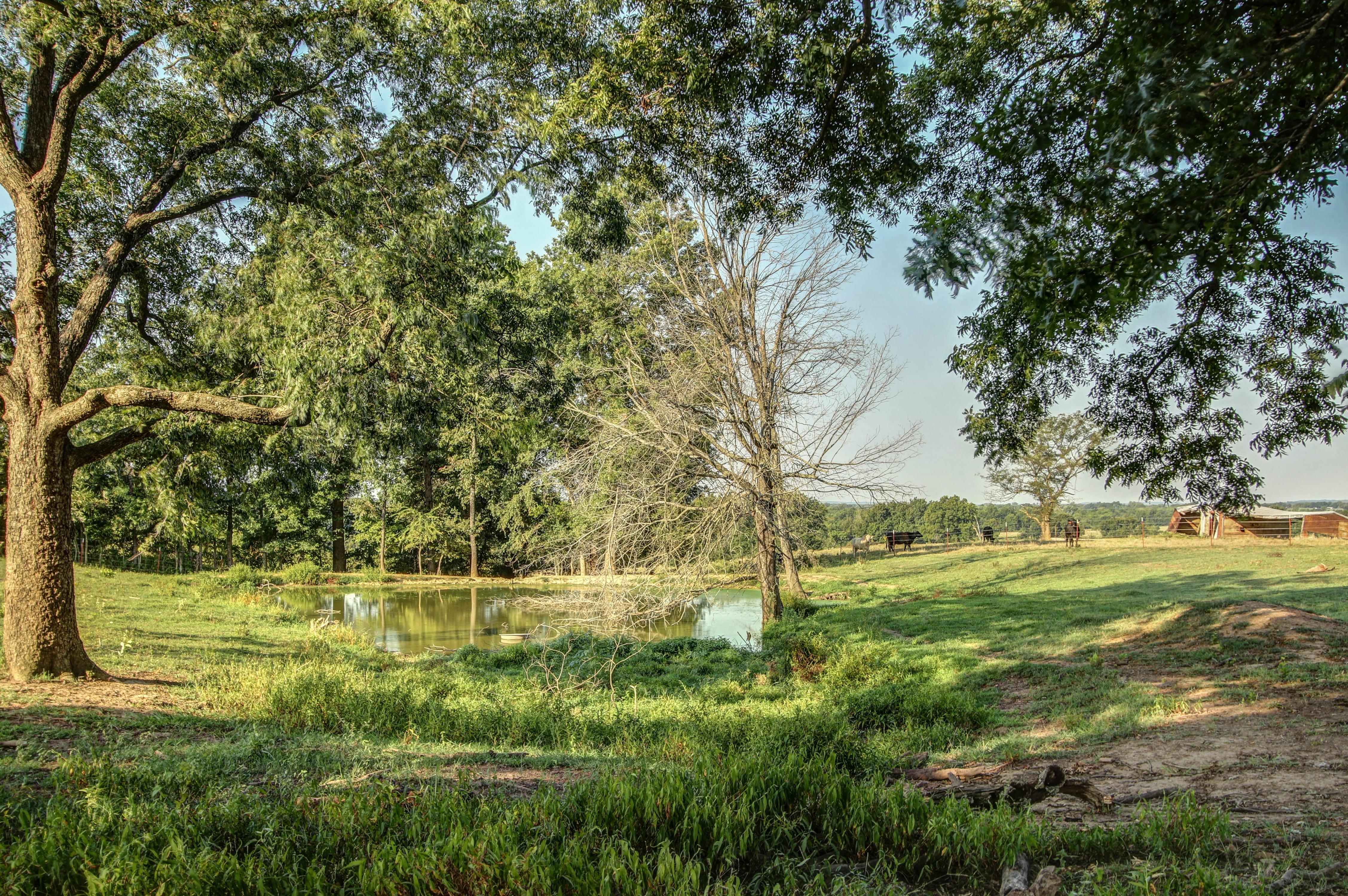 7131 E 173rd Road Property Photo 35