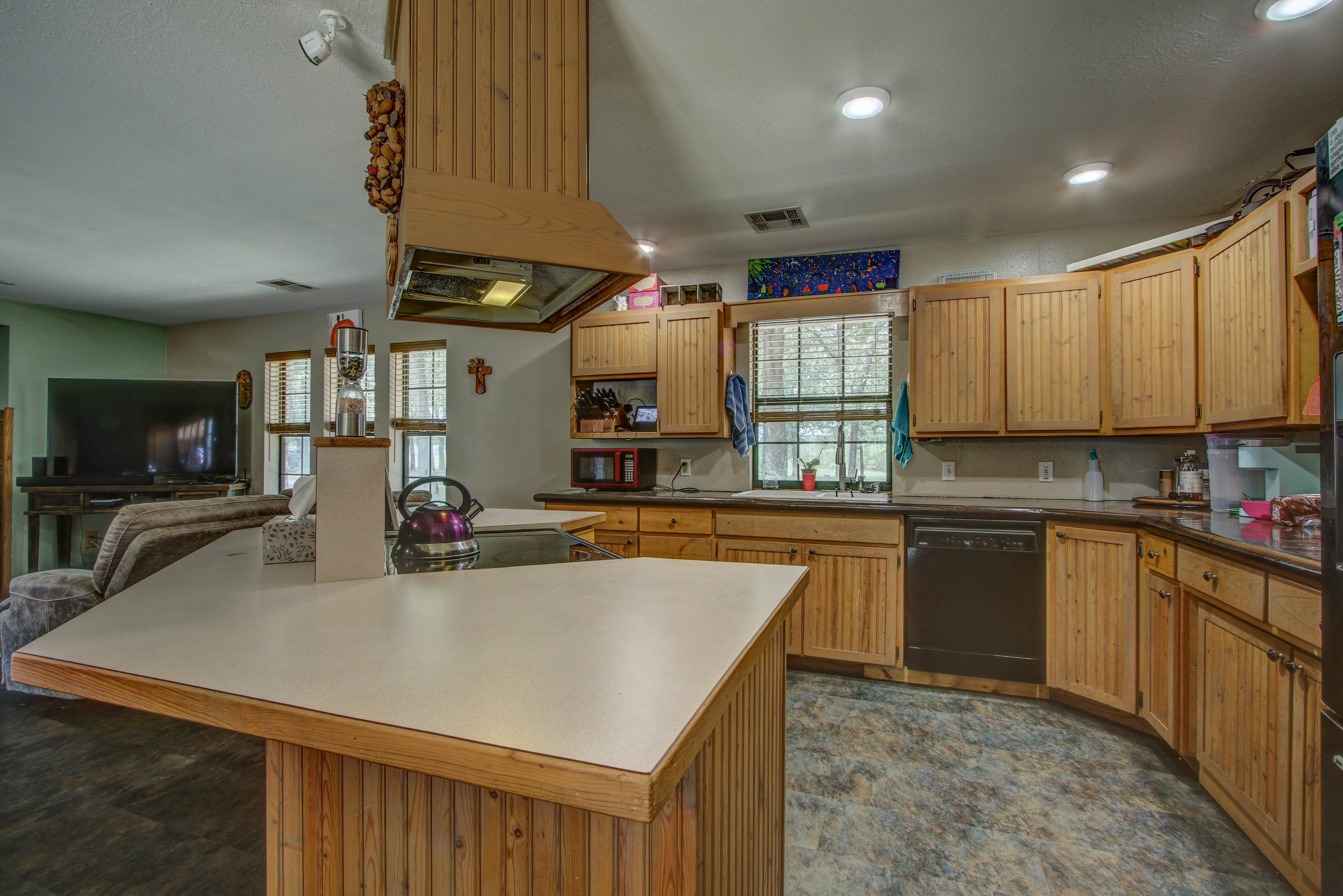 19320 W Dripping Springs Lake Road Property Photo 8