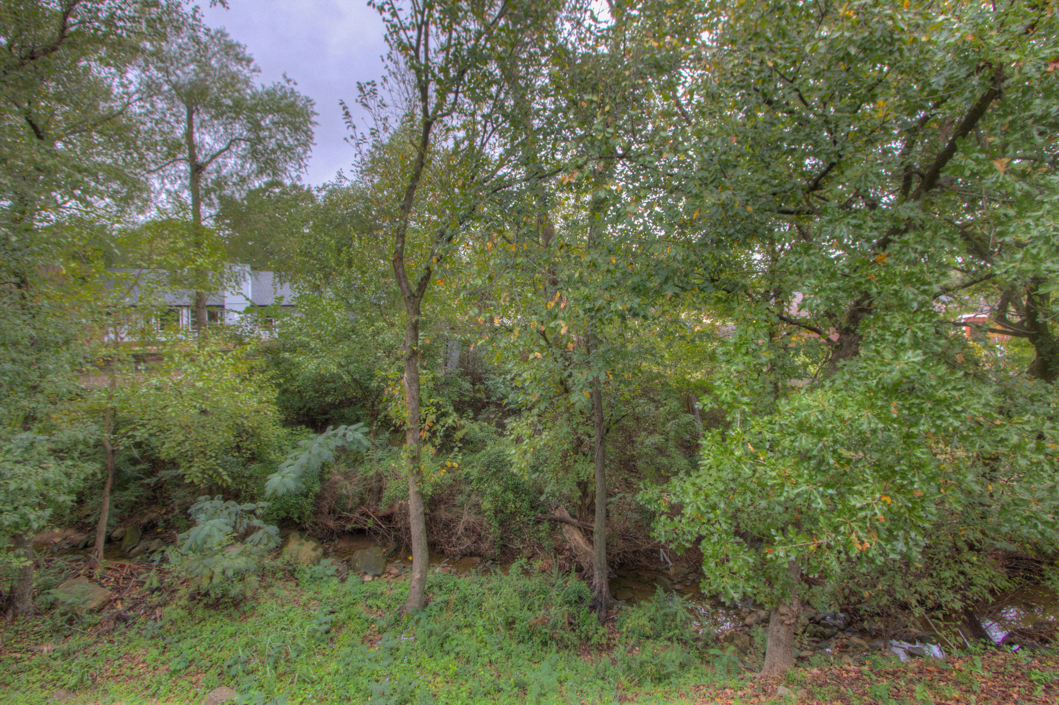 420 Fox Wood Drive Property Photo 24