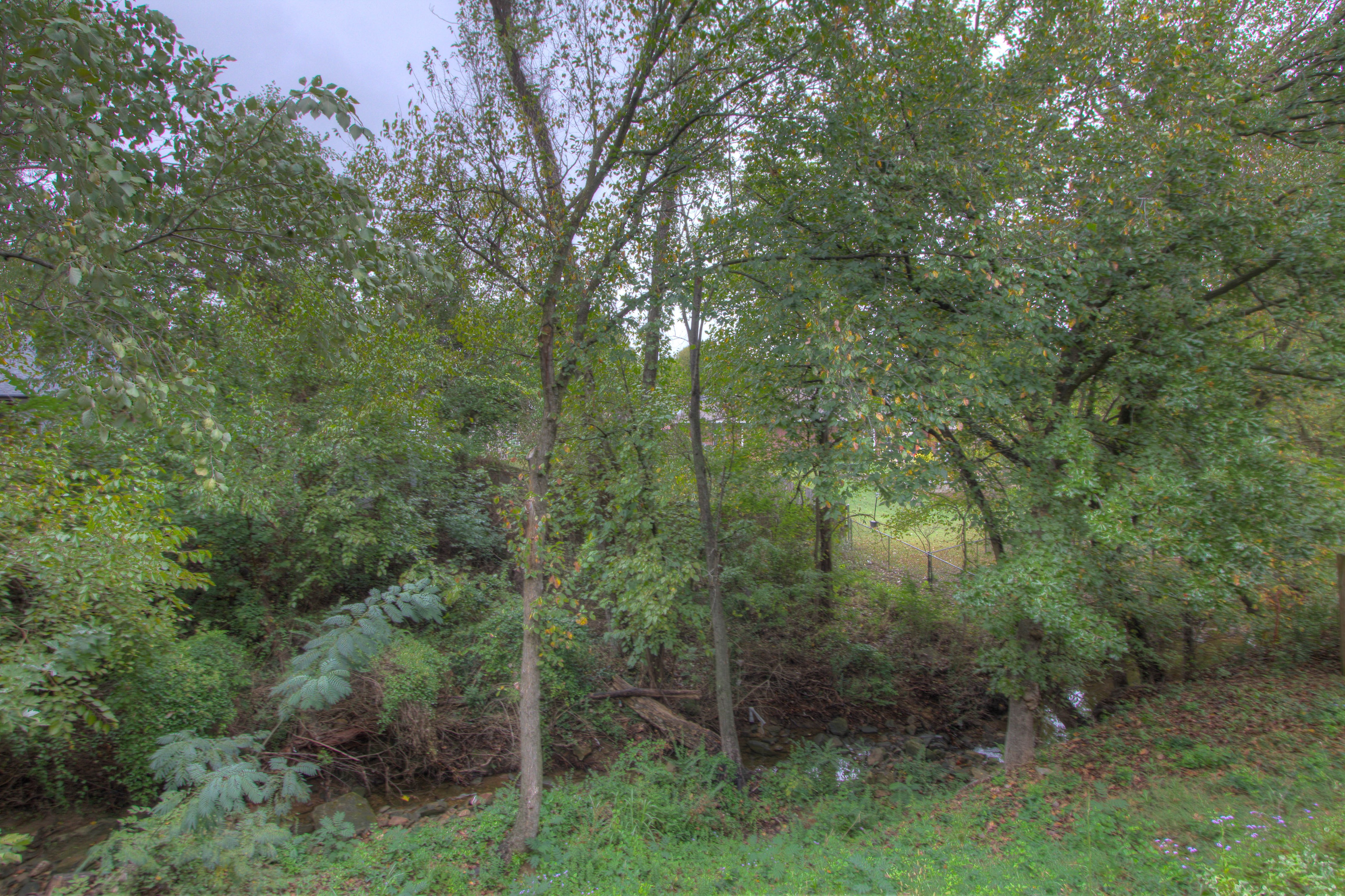 420 Fox Wood Drive Property Photo 28